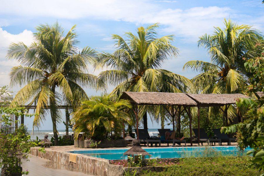 Thalassa_Indonesie_manado swimming pool with palm trees