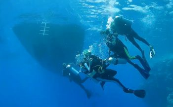 Renate Manders - Duiksafari met Stichting Gehandicapten Duiksport Fun Diving