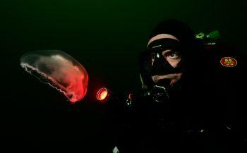 OBK Onderwaterfotografie 2020 - Juniors - Portfolio