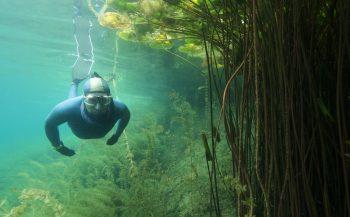 Thematafel - Freediving: echt leuk!