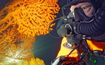 Webinar: Duiken naar de verborgen koralen van Noorwegen