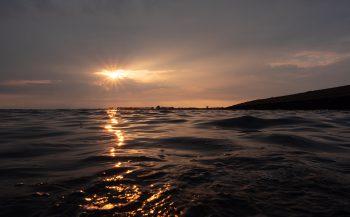 René Weterings - Oorkwallen bij ondergaande zon