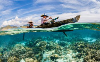 UN World Oceans Day Photo Competition 2021 - The Ocean Life & Livelihoods