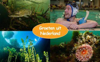 Groeten uit Nederland - Doe mee!