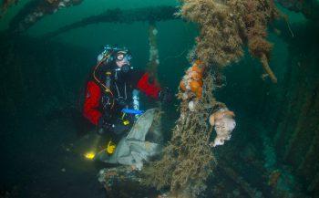 Grote schoonmaak in de zuidelijke Noordzee