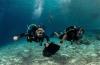 'Adoptieouders' voor duikstek Front Porch op Bonaire