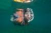 Zomerwedstrijd: Snorkelen is fun!
