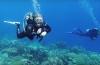 In beeld - Bonaire Dive Week 2018