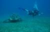 Willem-Jan Lock - Eerste duikvakantie in Egypte