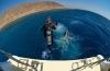 Dive and Travel zoekt een nieuwe collega