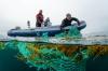 Belgische Noordzeewrakken zijn anders!