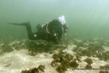 John Landa – Zo'n  schitterende duik