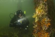René Weterings – Onderwaterfotografie als team!