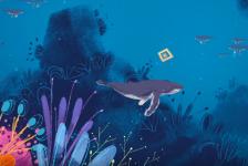 In beeld: Waarom zingen walvissen?