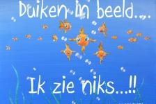 Willemien Hoekstra – Proefduik Duikvaker 2013