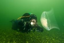 John Landa – De 1e duik van het ONK