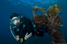 Reportagewedstrijd 2016 – Het Bonaire-gevoel op de Canarische Eilanden