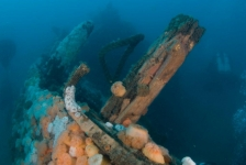 Noordzee: Wat maakt de zee zo bijzonder?