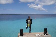 Bonaire Dive Week – Duik, ontdek, proef en beleef je eigen tropische avontuur