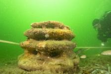 Expeditie Borkumse Stenen 2019 – Een stevige ondergrond