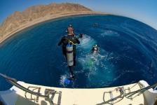 Dive and Travel zoekt leuke nieuwe collega