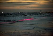 De Noordzee kleurde rood…