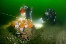 Duikexpeditie vraagt aandacht voor netwerk beschermde zeegebieden op de Noordzee