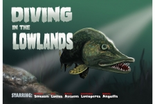 Marcel Thijs – Diving in the Lowlands, part I
