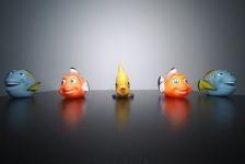 Onderwaterhuis.NL en Cressi sponsoren prijzen Dynamische foto-expo