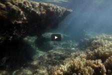 Duiker ontdekt verzonken stad voor kust Tanzania