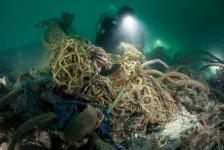 Nieuwe diersoorten en wrak van U-boot gevonden