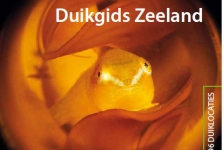 Ligt deze Duikgids Zeeland bij jou onder de kerstboom?