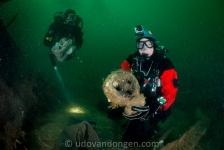 Geheimen in de Noordzee
