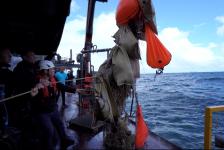 Expeditie Borkumse Stenen 2019 – De kop is eraf