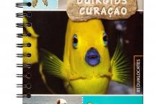 Duikgids Curaçao – nu verkrijgbaar!