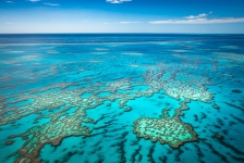 Great Barrier Reef – Percentage koraalbedekking nadert dieptepunt
