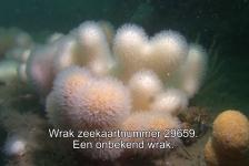 Jackie Oomen – Noordzee-expeditie (4)