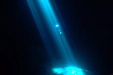 Liquid Dream – Freediven in hypnotiserende lichtstralen