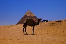 Egypte, land van piramiden en prachtige onderwaterwereld