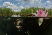 ONK Onderwaterfotografie 2019 – DuikeninBeeld Publieksprijs