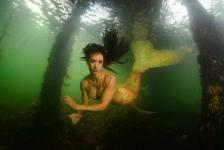 ONK Onderwaterfotografie 2018 – Masters – Groothoek met model