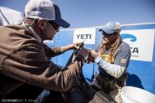 Onderzoek naar witte haaien – test met nieuwe ruimtevaarttechnologie