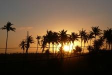 Reportagewedstrijd – Ocean Safari deel 3