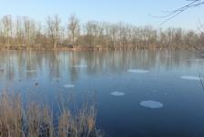 Steve Saenen – Mijn eerste ijsduik