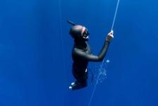 Duikvaker Thematafel: Freediving