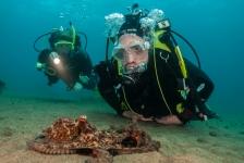 Lanzarote – Aangenaam duiken in Europa