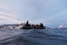 Mieke Noordanus – Bultruggen en orka's in Noorwegen