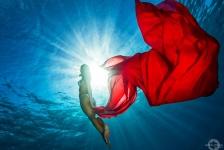 Red Sea Beauty – Het verhaal achter de foto