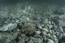 Vergunning voor stort staalslakken is vernietigd