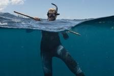 Saba haaienexpeditie 2019 – De heks en de haai